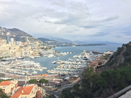 Views of the Monte Carlo Bay.