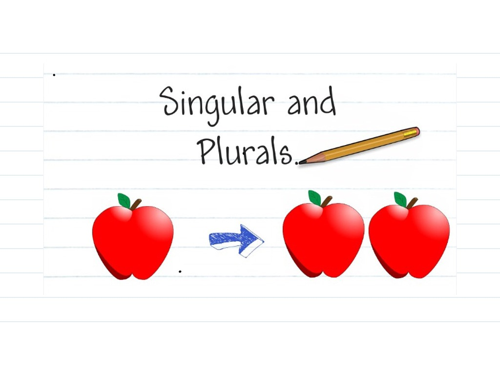 English Corner Singular And Plural Nouns The Life And