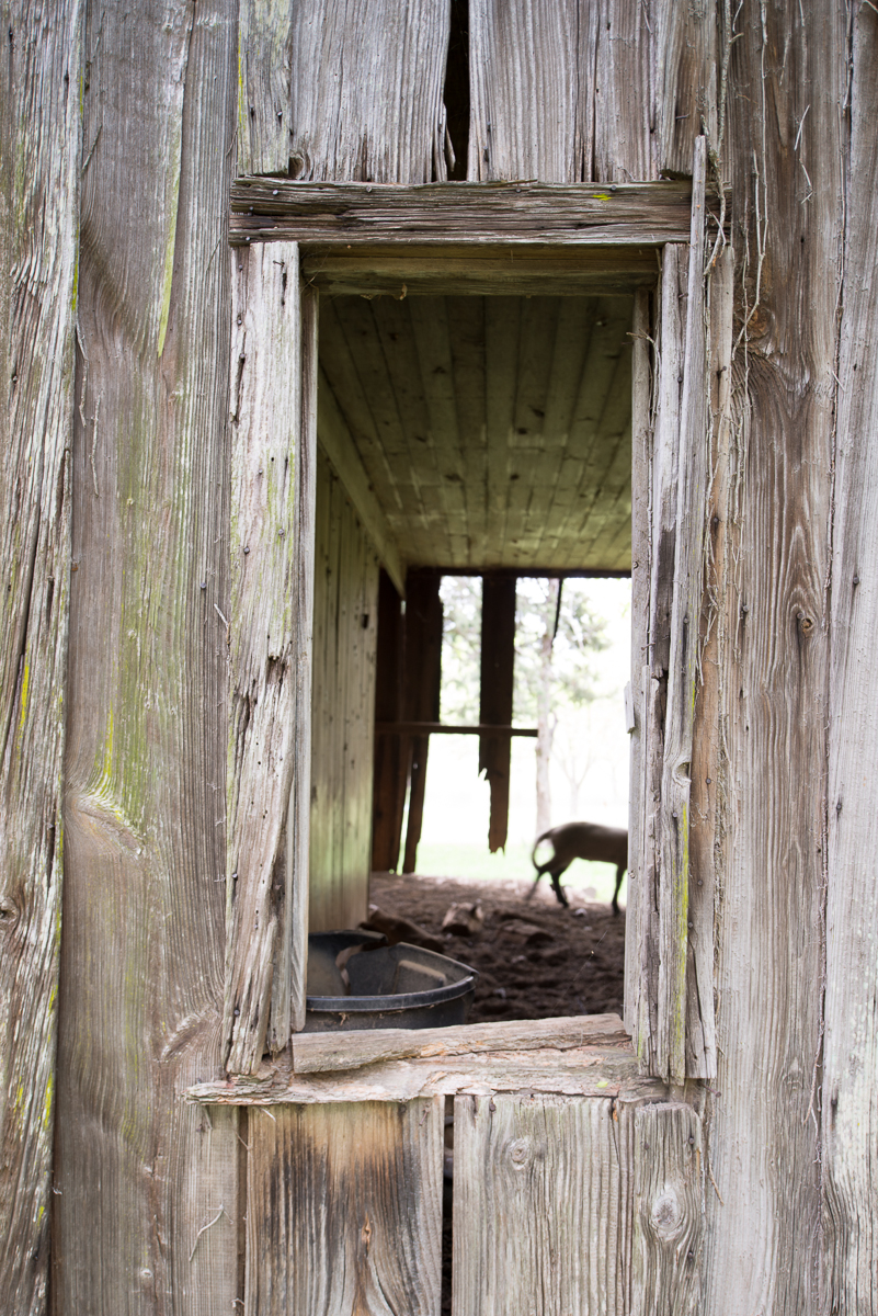Sewell-Greer Plantation, Slave Quarters