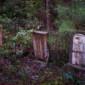 McGee Cemetery thumbnail