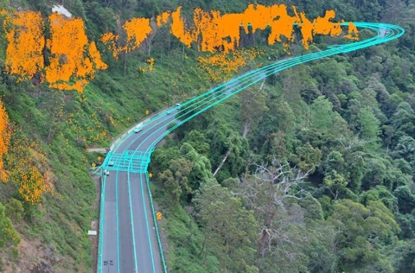 Photogrammetry services for cunnungham gap landslide zone