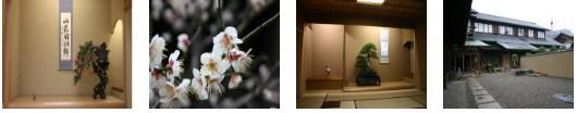 Museum Bonsai Syunkaen: Pengalaman Mempelajari Seni Tanaman Pot Di Edogawa Tokyo