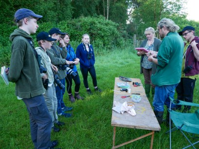 Ringing demonstrating
