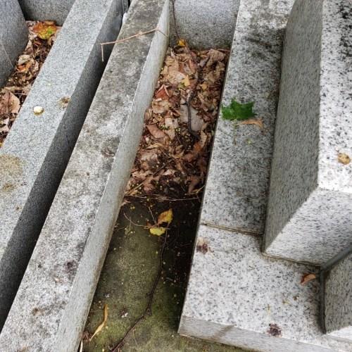 お墓の清掃