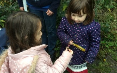 A visit from the RSPB