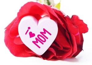 母の日のカーネーション贈り物ギフト