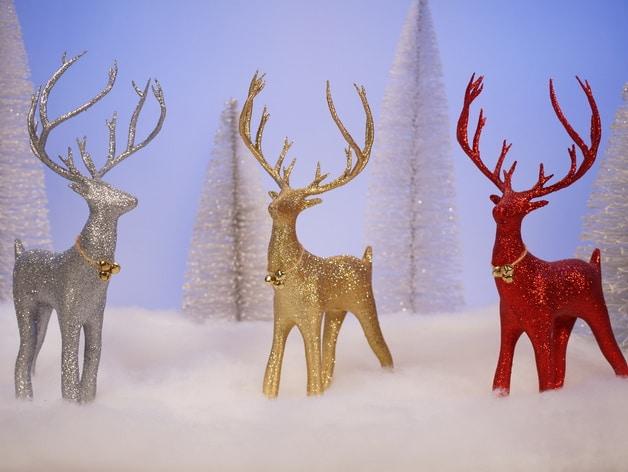 Les rennes de Noël