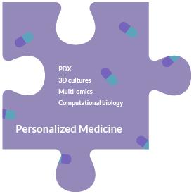 piece-personalized-medicine
