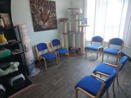 Separate waiting room for cats at Bentley Road Vets Doncaster