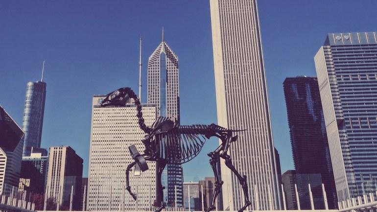 Chicago16