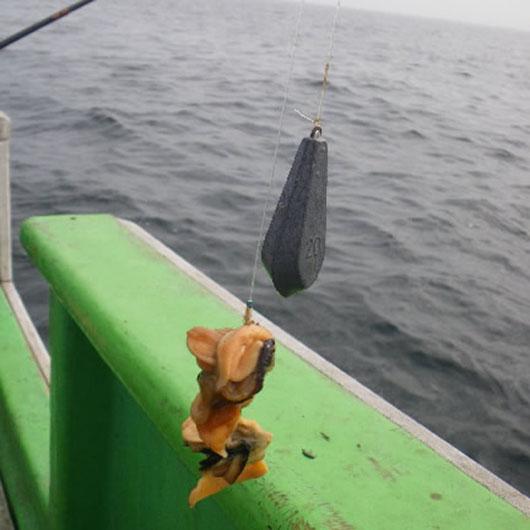 石鯛仕掛けハリス