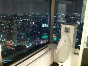 俯瞰天下的廁所 (2)