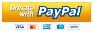 donate now paypal button berean armed forces ministry