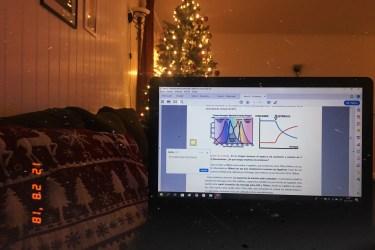 Koltukta bağdaş kurmuş otururken kucağımdaki bilgisayarı çektiğim bir fotoğraf. biraz karanlık, sadece ekrandaki yazılar ve arkada duran yılbaşı ağacının ve ışıklarının hafif bulanık görüntüsü belirgin. Bilgisayar ekranında çok küçük yazılar ve grafikler var, ders notlarım. solda duvarda asılı olan bir çerçeve de biraz parlayarak görünüyor.
