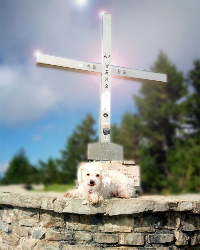 Pillstein Gipfelkreuz bei der Wolfgangsee Wanderung mit Hund