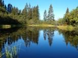 Stubener See