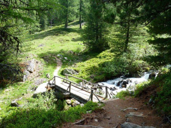 Aufstieg ins Val da Camp über Terzana