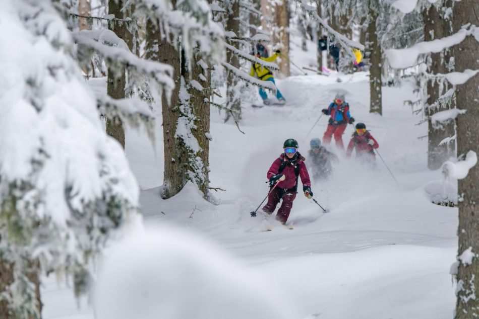 Shades of Winter Freeride Camp