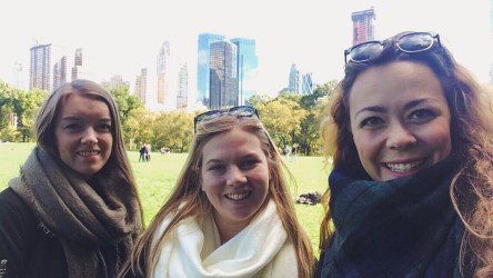 Central park - Sheep's meadow