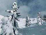 Bärentalerspitz 2450m