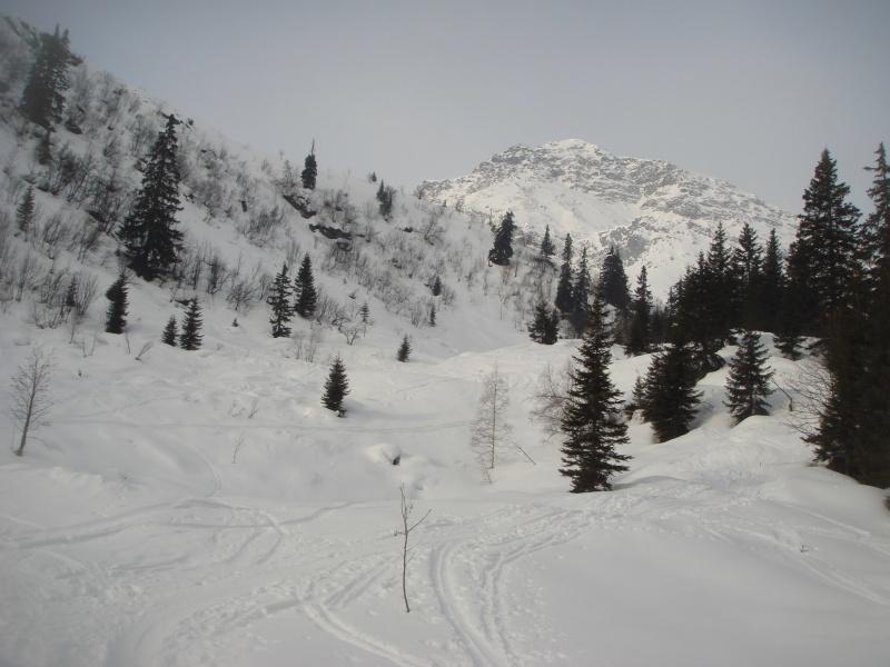 Ellesspitze 2661 m