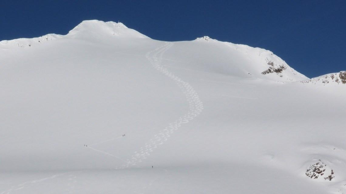 Langtaufererspitze (3526m)