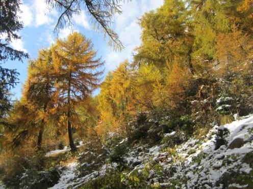 Wanderung Grauner Berg Suedtirol IMG_5693