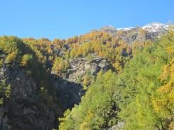 Wanderung Grauner Berg Suedtirol IMG_5746