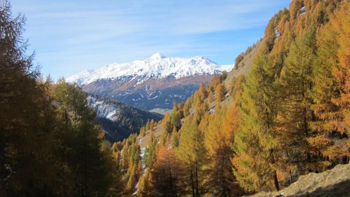 Grauner Berg (2526m) Herbstwanderung – Mit Video
