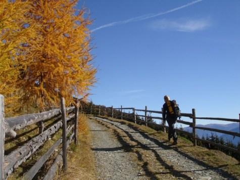 Herbstliche Wanderung