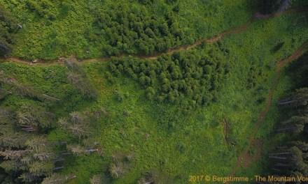Zwölftes Schutzwaldprojekt von Helvetia im Kanton Uri