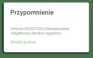 bergsystem_sprzedaz_wznowienia_tabela_okno