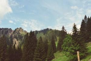 Aufstieg zum Steineberg
