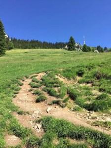 Aufstieg zur Alpe