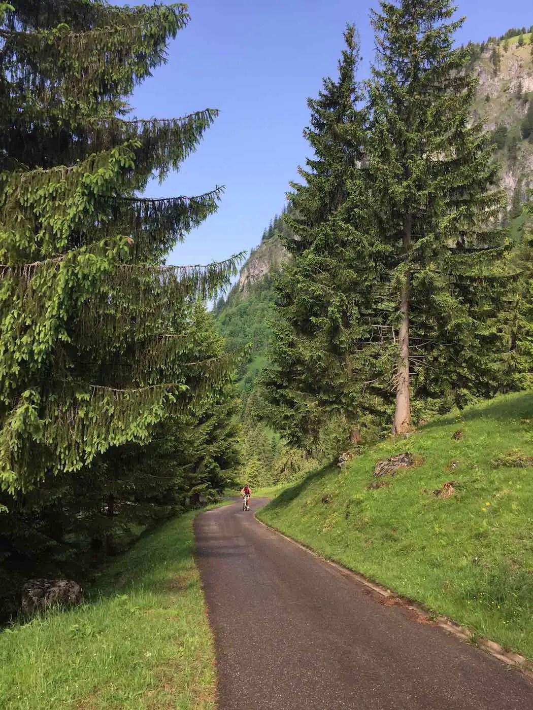 Anstieg zur Alpe