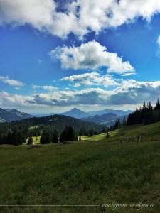 Blick von der Alpe Höllritze in Richtung Grünten