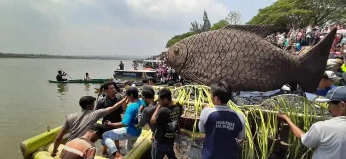 Ikan Raksasa