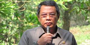 Wakil Walikota Benyamien Davnie