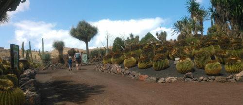 Kaktusparken