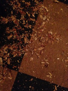 Peanut-Shells-Peanut-Bar