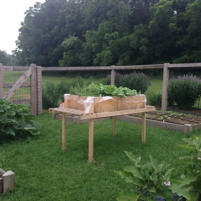 Raised bed at Berks County Penn State Extension 2015