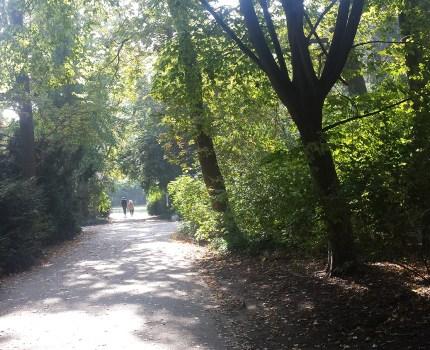 Ting omkring Tiergarten