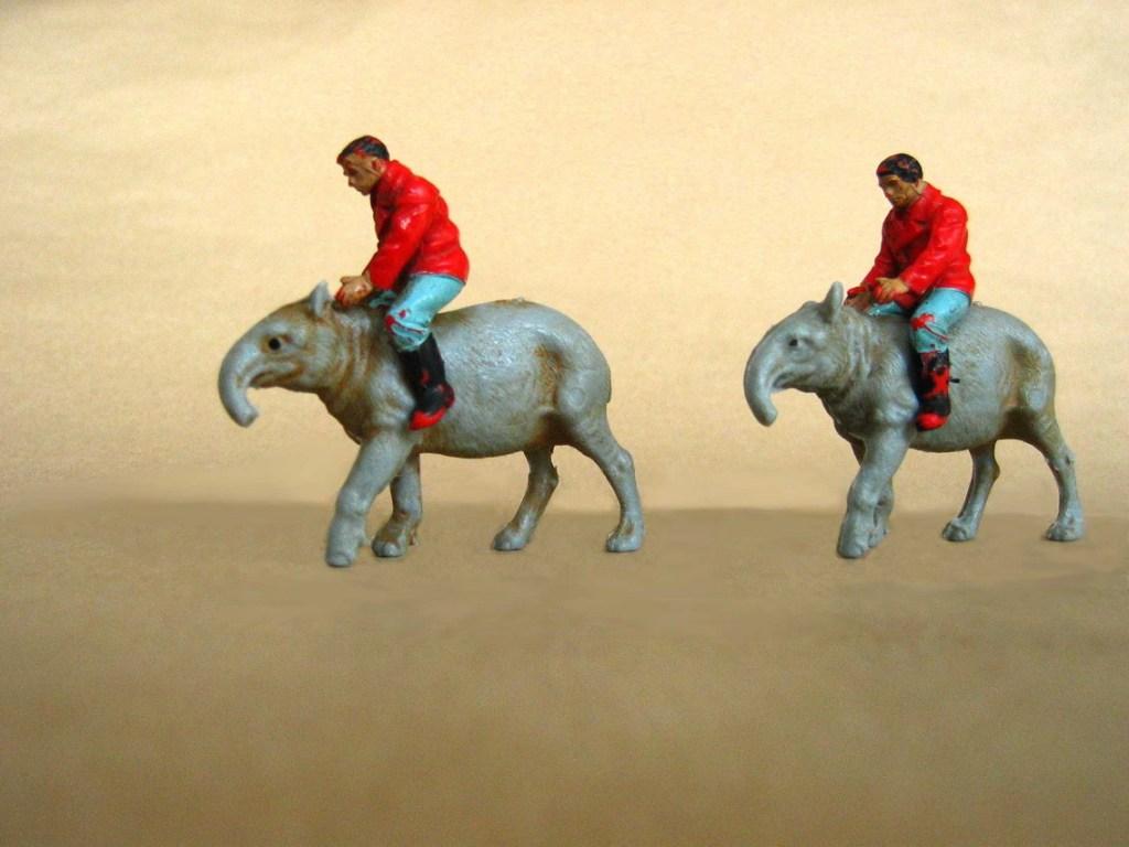 Tapir-Riding-k