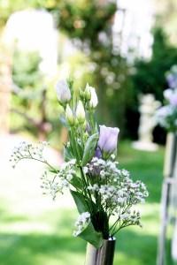 Blume in lila Farben