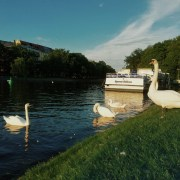 © Maria Assunta - Landwehrkanal, Berlin