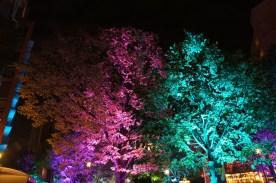 lichtfestival160