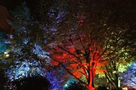 lichtfestival163