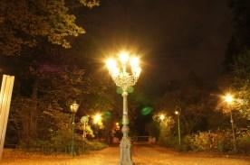 light36