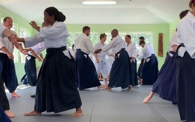 More tai sabaki exercises with Smith sensei.