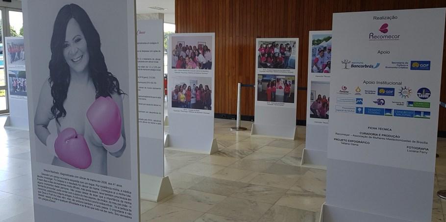 GDF lança programação do Outubro Rosa - Bernadete Alveslves